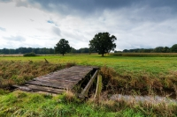 lane-bridge-bach-landscape-north